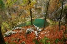 Divje jezero Icra J Peternelj